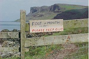 hand foot mouth