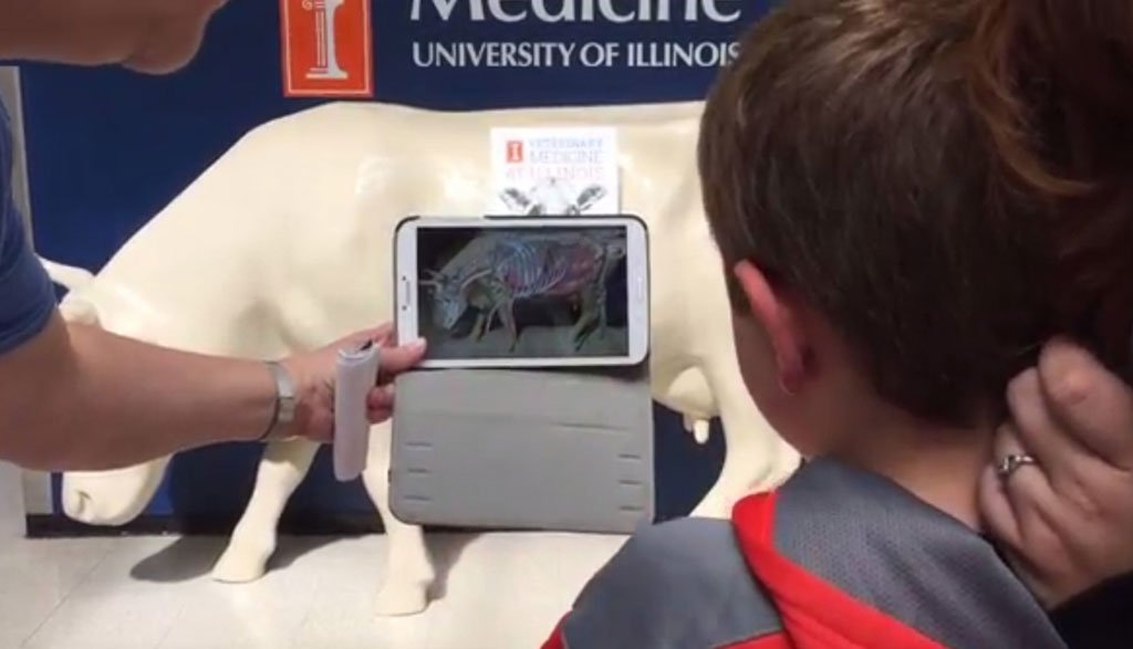 3D app guides vet students through cow's anatomy