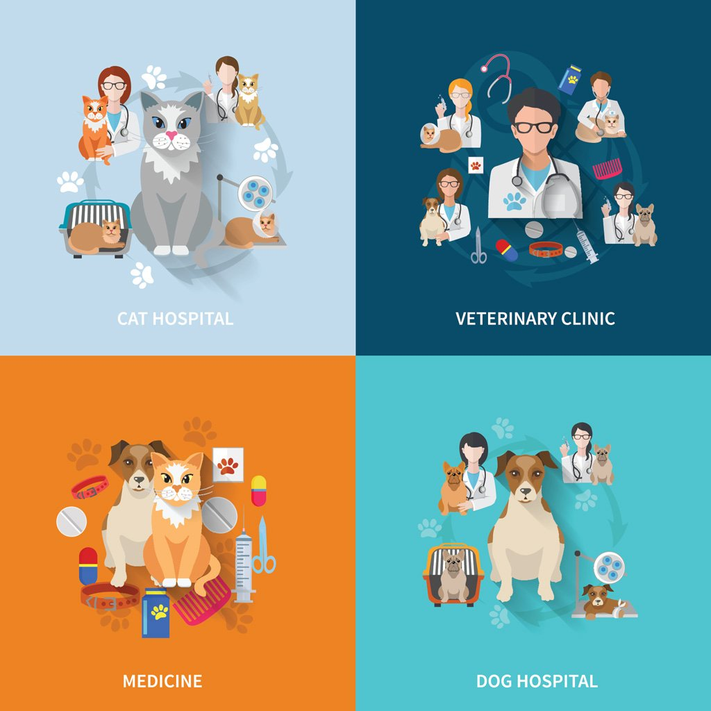 marketing a veterinary clinic