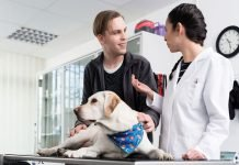 discussing veterinary costs with pet owners